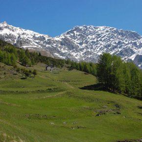 "GESTIRE partecipa al workshop ""Alpine Grassland Monitoring and Assessment"""