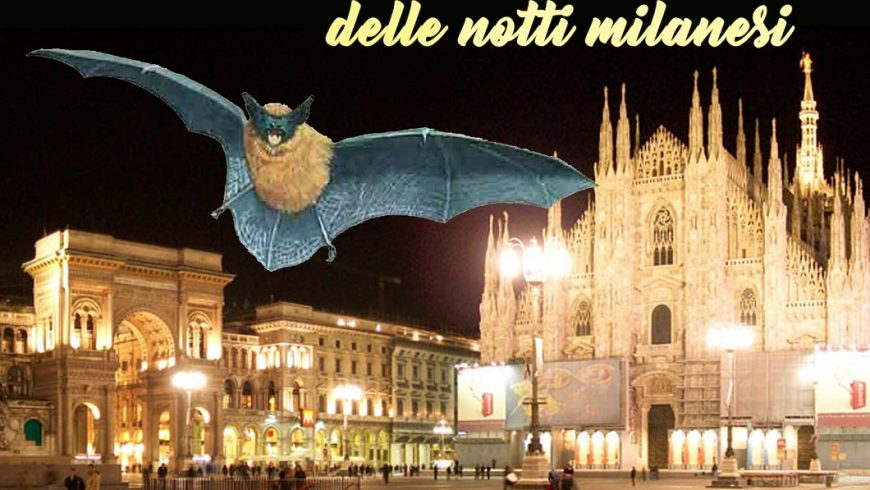 Bat night a Milano