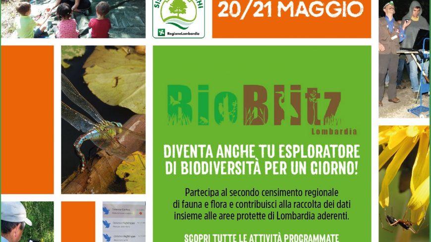 Bioblitz Lombardia 20-21 maggio: esploratori della biodiversità per un giorno!