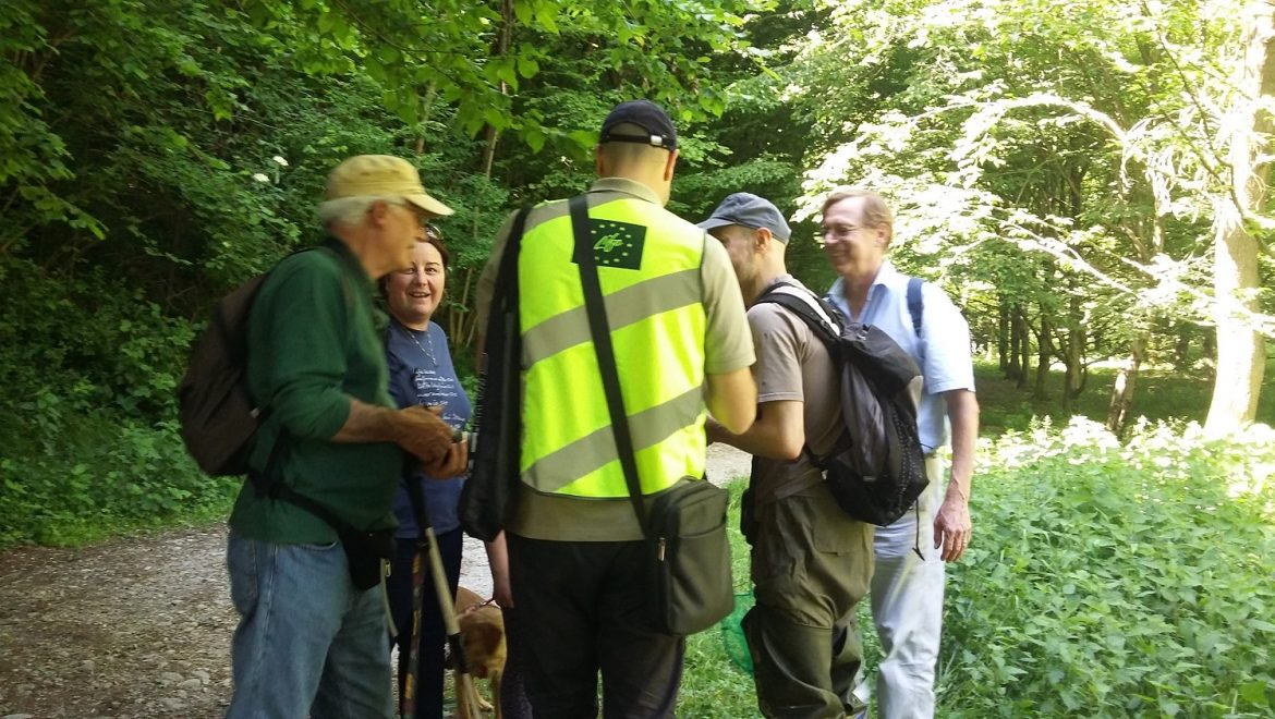 BioBlitz: the numbers from the 2017 event
