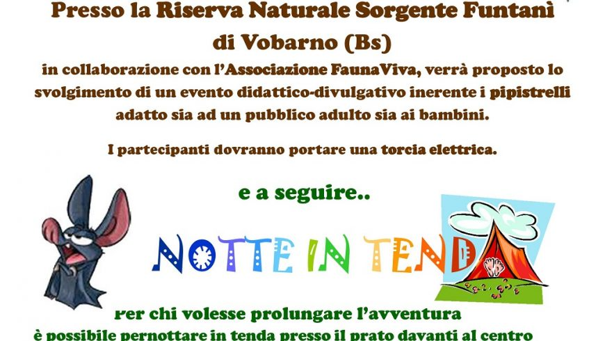 Bat Night nella Riserva Naturale Sorgente Funtanì di Vobarno (Bs)