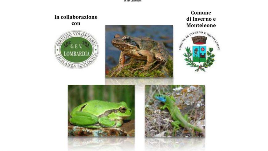 Incontro di formazione su monitoraggio di anfibi e rettili di interesse comunitario – Monteleone (PV)