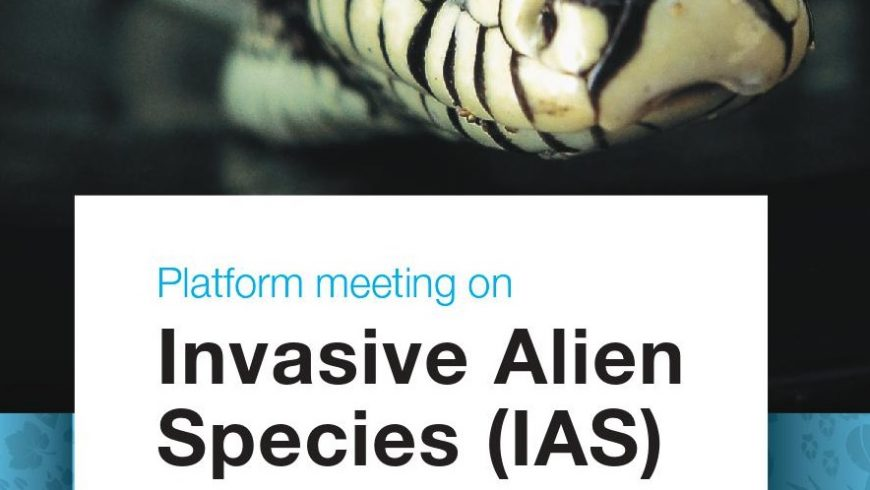 Platform meeting su specie aliene invasive a Milano