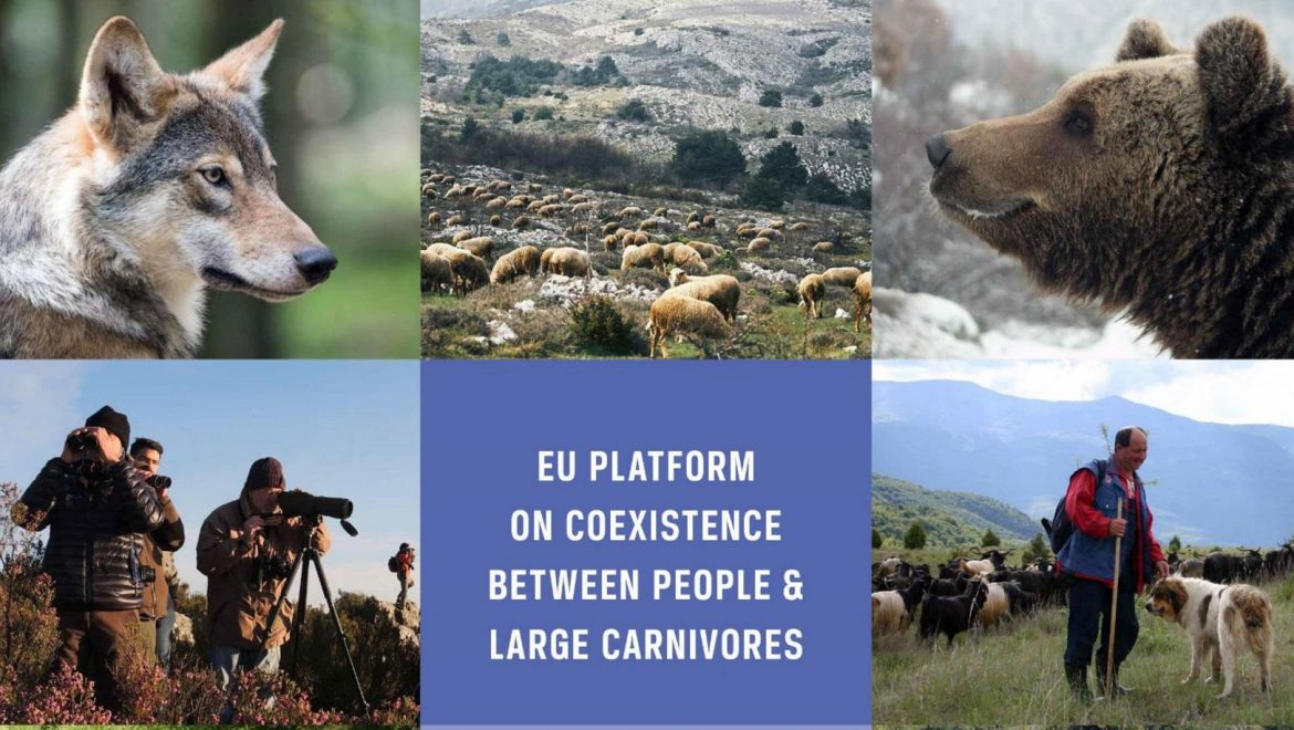 The European Platform on Coexistence between People and Large Carnivores