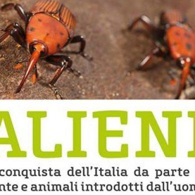 Mostra scientifica sulle specie aliene invasive al Museo civico di Morbegno dal 2 marzo al 28 aprile