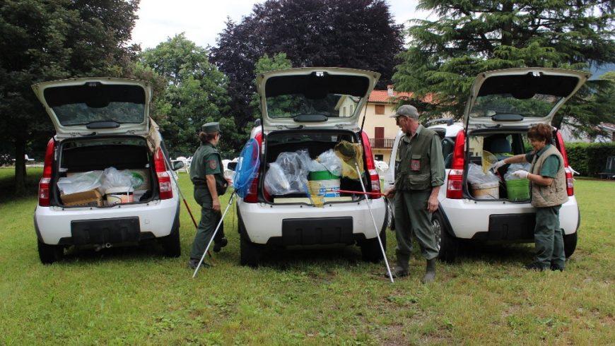 Volontari si confrontano sul salvataggio degli anfibi – disponibili i materiali del 20 febbraio