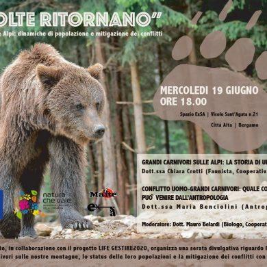 I prossimi appuntamenti con i grandi carnivori in Lombardia
