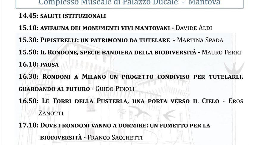 Gli ecosistemi urbani: integrare la conservazione del patrimonio storico-culturale e della fauna – Mantova