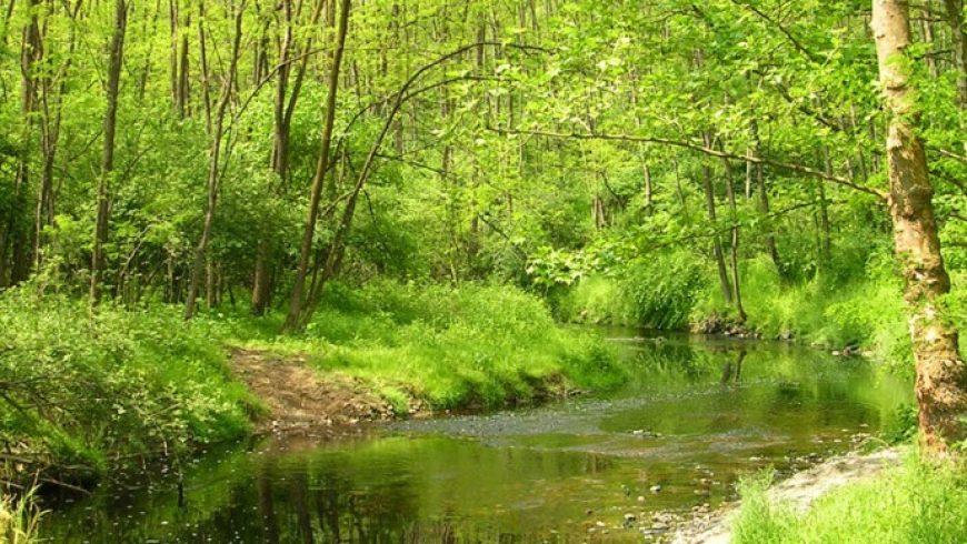 200mila euro per i primi 4 progetti di ripristino di connessioni ecologiche