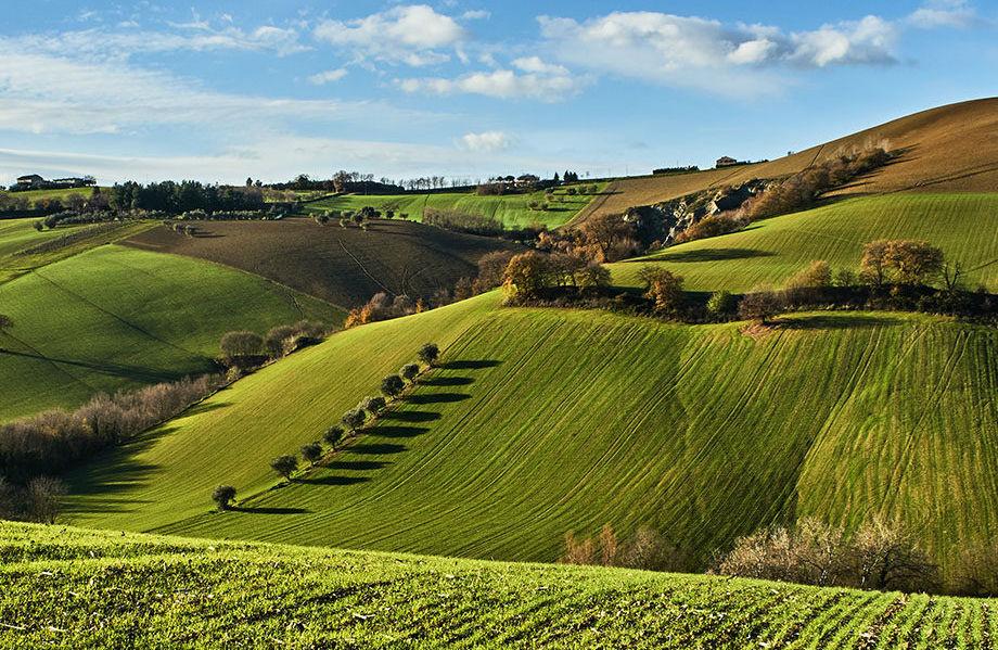 Bando Misura 12 PSR: 1 milione di euro per compensazioni per zone agricole Natura 2000