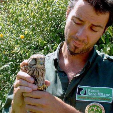 La tutela della biodiversità tra i nuovi compiti delle GEV lombarde: modificata legge regionale